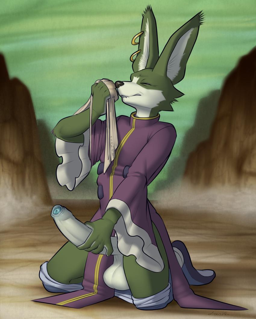 towa dragon ball xenoverse z Breath of the wild ashai